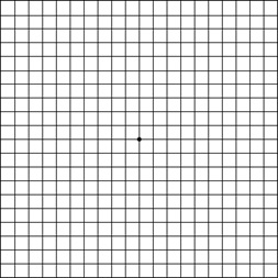 The Amsler Grid